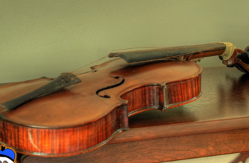Most Popular Instruments
